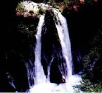 photograph of Burney Falls